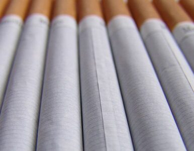 Policjanci zlikwidowali nielegalną fabrykę papierosów. 58 osób zatrzymanych