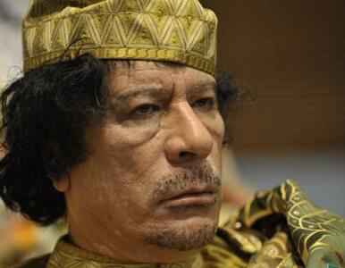 Kadafi - jeśli nie władza w Libii, to praca na Białorusi?