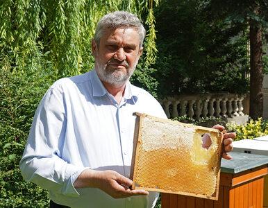 Ardanowski: W nowym budżecie unijnym ponad 42 mln zł... dla pszczół