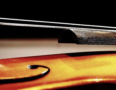 """Muzyk apeluje o zwrot skradzionych skrzypiec. """"Grałem na nich od 20 lat"""""""