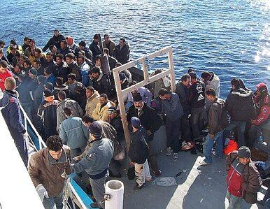 IOM: W 2016 r. do Grecji i Włoch przybyło ponad 76 tys. imigrantów