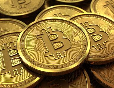 Kupili Bitcoiny za pieniądze z oszustw. Pokrzywdzeni stracili ponad 1,4...