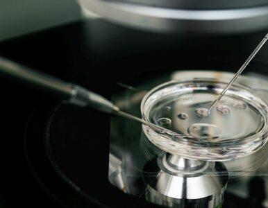 Polka podważa dogmaty embriologii