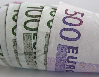 """Szwedzkie """"nie"""" dla euro"""