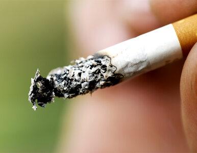 Zlikwidują palarnie. Wojny z palaczami ciąg dalszy.