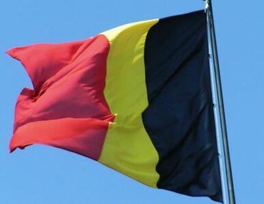 Trener belgijskich piłkarzy podał się do dymisji
