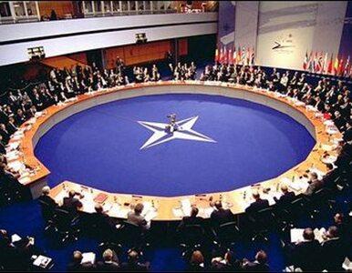 NATO umacnia wschodnią flankę. 5 tys. żołnierzy i 6 nowych baz