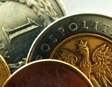 Przedsiębiorcy zbankrutują przez zatory płatnicze? PO: płaćcie na czas