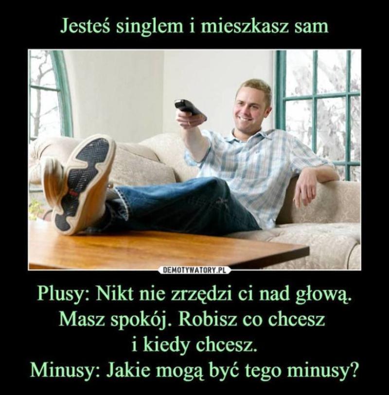Mem na Dzień Singla