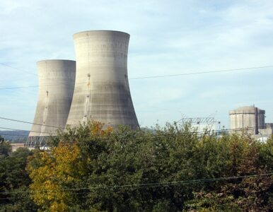 Japonia: Restart pierwszego reaktora atomowego od czasu katastrofy w...
