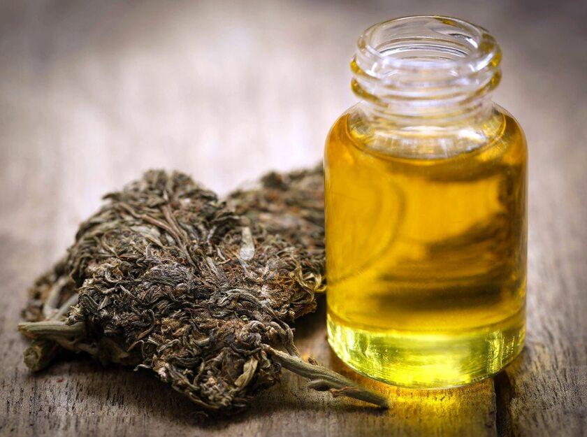 medyczna marihuana (zdj. ilustracyjne)