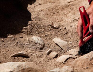Polacy badają zaginione antyczne miasto w Albanii