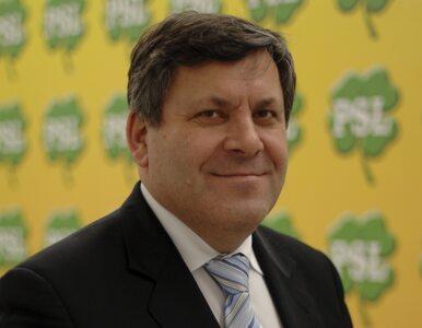Tarcia w koalicji PO-PSL. Wicepremier Piechociński uspokaja