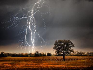 Prognoza pogody. Meteorolodzy ostrzegają przed pierwszymi burzami w tym...