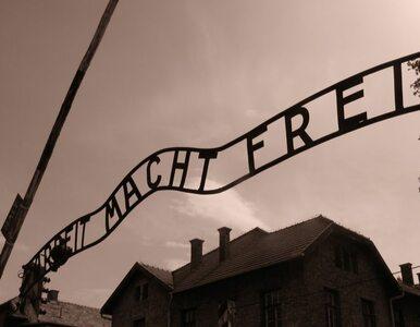 Brytyjscy nastolatkowie staną przed sądem za kradzież w Auschwitz