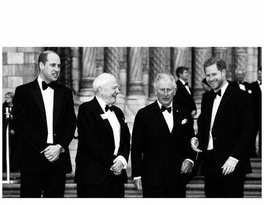 Harry, William i książę Karol na jednym zdjęciu. O co chodzi?