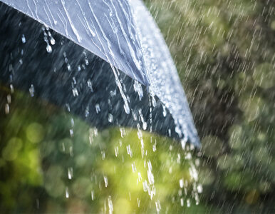 Koniec letniej aury. W sobotę chłodno i deszczowo