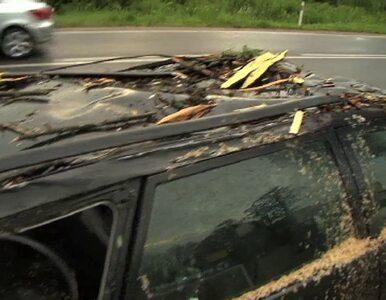 Drzewo spadło na jadący samochód. Nikt nie został ranny