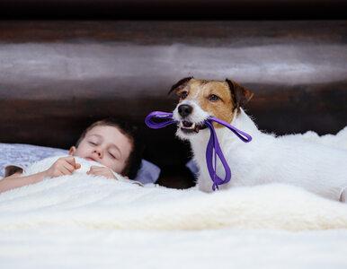 Jak dorastanie z psem wpływa na dziecko? Badania