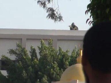 Egipt: snajper strzela do tłumu