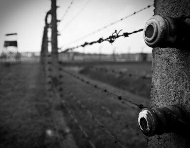 """""""Die Welt"""" sądzone za """"polskie obozy koncentracyjne"""""""