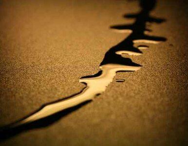 OPEC: embargo na irańską ropę? A może nie?