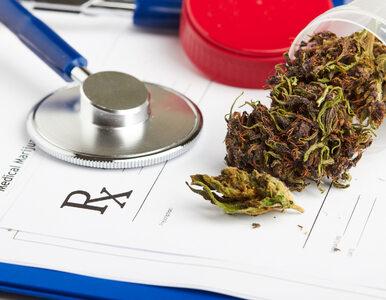 Senatorowie za medyczną marihuaną. Wprowadzili istotną poprawkę