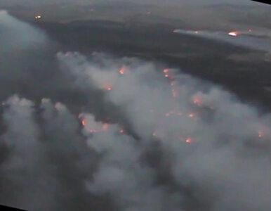 Pożary w Biebrzańskim Parku Narodowym. Przerażający film z drona