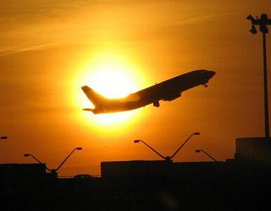 Dreamlinery polecą już w kwietniu?