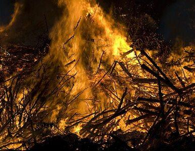 Pożar w altance na Pradze. Nie żyją 2 osoby