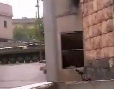 Siły Asada w Hims. Trwają aresztowania i plądrowanie