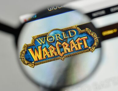 Sprawca ataków na serwery Wikipedii i World of Warcraft zatrzymany