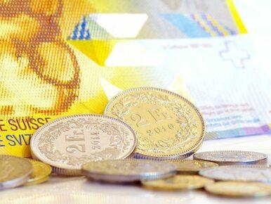 Kredyty frankowe: kto jest konsumentem?