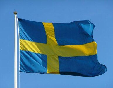 Szwecja delegalizuje rasę, by... walczyć z rasizmem
