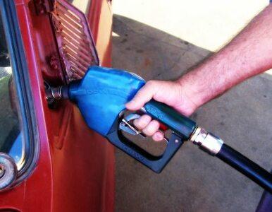Zapłacimy więcej za paliwo? Lotos podnosi ceny
