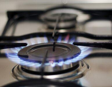Minister środowiska: Jest potencjał do obniżenia ceny gazu