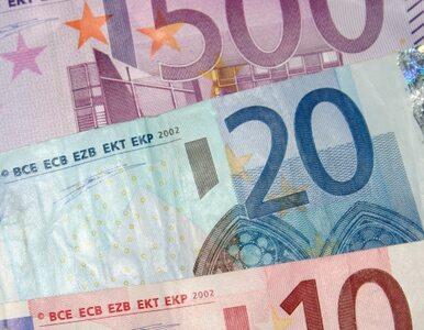 """Niemcy wieszczą upadek euro. """"Mamy już tylko kilka tygodni czasu"""""""