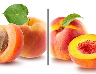 Morela czy nektarynka? Który owoc ma mniej kalorii?