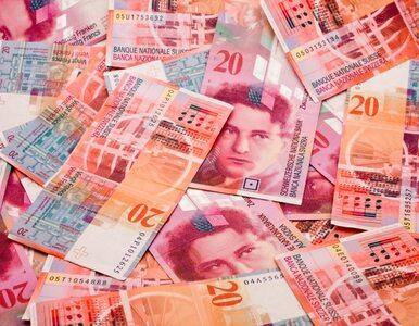 Propozycja ZBP. 800 mln zł na pomoc dla frankowiczów