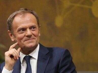 """Tusk nie chce wspólnej opozycyjnej listy. """"Nowoczesna może być w kłopocie"""""""