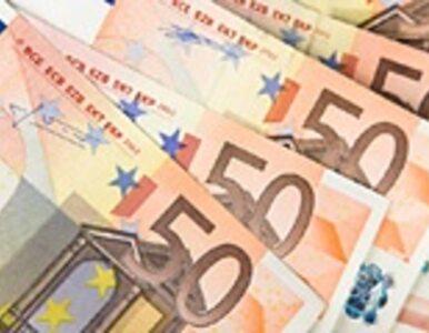 UE: 50 mld pomocy dla krajów z poza strefy euro