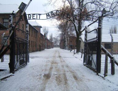 69. rocznica wyzwolenia Auschwitz. Złożono kwiaty pod Ścianą Straceń