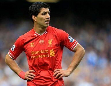 Suarez rządzi w Anglii. Tak wybrali piłkarze