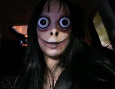 Polska vlogerka nagrała filmik, na którym prowadzi samochód z maską na...