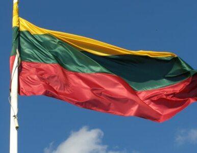 Litwa przekazała Ukrainie broń. Za darmo
