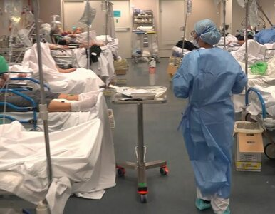 Jak teraz wyglądają włoskie szpitale? Medycy z Bergamo do nagrania...