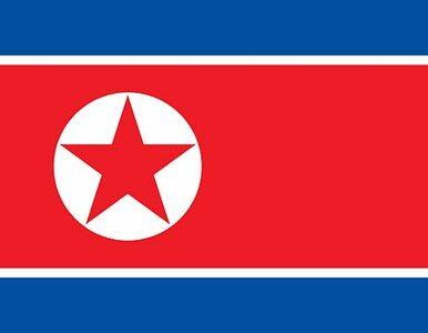 """Korea Północna przyznaje się do obozów. """"Ludzie pracują nad swoimi..."""