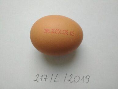 Uwaga! Salmonella w kolejnej partii jaj z Biedronki