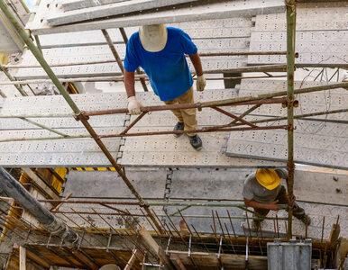 Koreańczycy pracują w Polsce jak niewolnicy. W ten sposób wspierają...