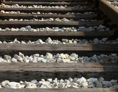RPA: kierowca nie zauważył pociągu, 30 osób nie żyje
